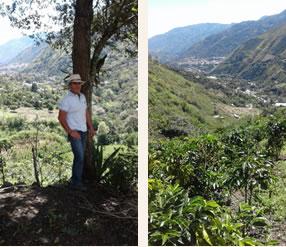 コロンビア アルト・デ・ラコリナ農園