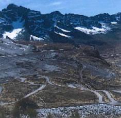 ボリビア コパカバーナ農園 インカ アレグレ